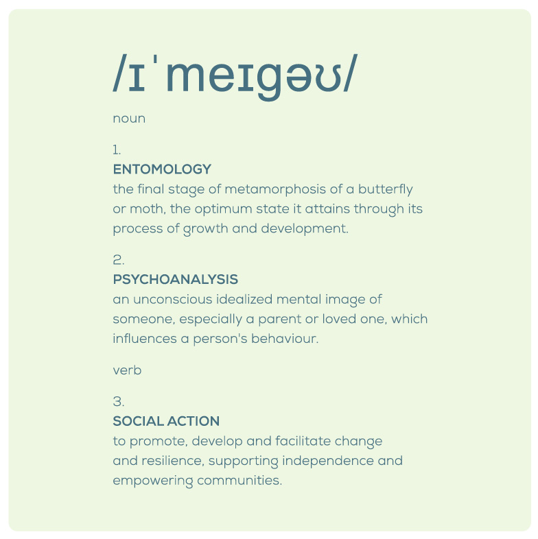 Definition of Imago
